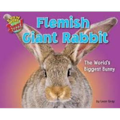 Flemish Rabbit Book Image